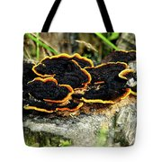 Wild Mushrooms Growing On Tree Trunk Tote Bag