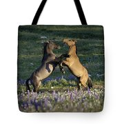 Wild Mustangs Playing 1 Tote Bag by Roger Snyder