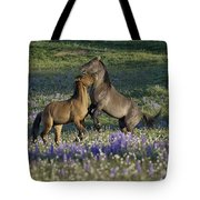 Wild Mustangs Playing 2 Tote Bag by Roger Snyder
