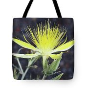Wild Nevada Yellow Flower Tote Bag