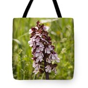Wild Orchid In Meadow  Tote Bag