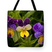 Wild Pansy Trio Tote Bag