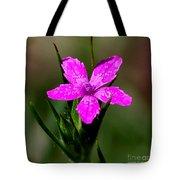 Wild Pink Tote Bag