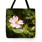 Wild Pink Eglantine Tote Bag