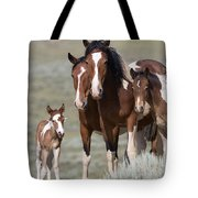 Wild Pinto Family Tote Bag by Carol Walker