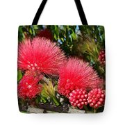 Wild, Red Fluffy Flowers  Tote Bag