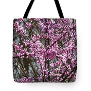Wild Redbuds Tote Bag