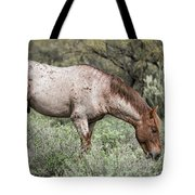 Wild Roan Stallion  Tote Bag