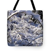 Wild Rose Arch Tote Bag