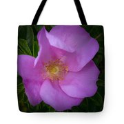 Wild Rose Tote Bag by Garvin Hunter