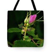 Wild Rosebud Tote Bag