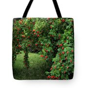 Wild Rosehips Tote Bag