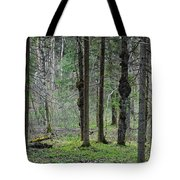 Wild Spring Forest Tote Bag