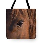 Wild Stallion's Eye Tote Bag