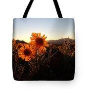 Wild Sunflowers Of Buena Vista Tote Bag