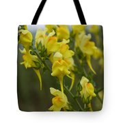 Wild Toadflax Tote Bag