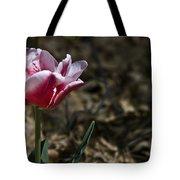 Wild Tulip Tote Bag