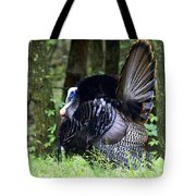 Wild Turkey 1 Tote Bag