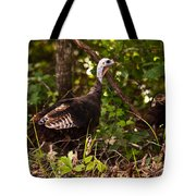 Wild Turkey In Tennessee Tote Bag