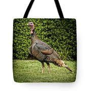 Wild Turkey Tote Bag