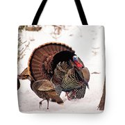 Wild Turkey Parade Print Tote Bag