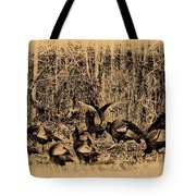 Wild Turkeys Tote Bag by Bill Cannon