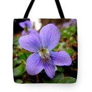 Wild Violet 1 Tote Bag