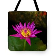 Wild Water Lily Tote Bag
