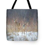 Wild Winter Tote Bag