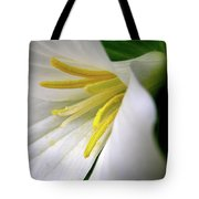 Wild Woodland Beauty Tote Bag