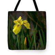 Wild Yellow Iris Tote Bag