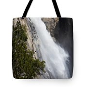 Wildcat Falls  Tote Bag
