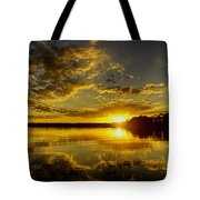 Wildcat Sunset Tote Bag