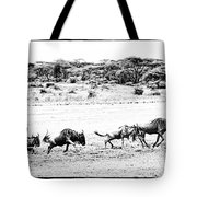 Wildebeest On The Move Tote Bag