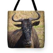 Wildebeest Taking A Break Tote Bag