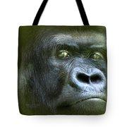 Wildeyes-silverback Tote Bag