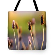 Wildflower 2 Tote Bag