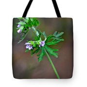 Wildflower 2 Tote Bag