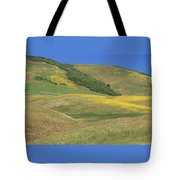 Wildflower Display - Salisbury Potrero Tote Bag