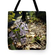 Wildflower Looker Tote Bag