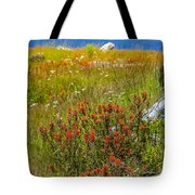 Wildflower Meadow With Indian Paintbrush Tote Bag