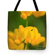 Wildflower Named Birdsfoot Trefoil Tote Bag