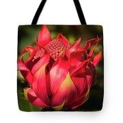 Wildflower Waratah Tote Bag