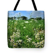 Wildflowers Along Country Road In Mchenry County Tote Bag