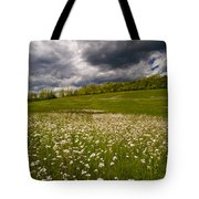 Wildflowers And Storm Clouds Tote Bag