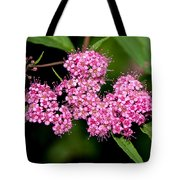 Wildflowers Come In Many Sizes Tote Bag