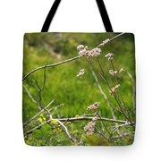 Wildflowers Marblehead Massachusetts Tote Bag