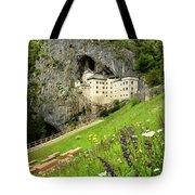 Wildflowers On Hillside At Predjama Castle 1570 Renaissance Fort Tote Bag
