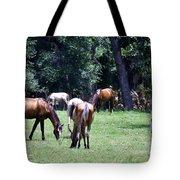 Wildhorses Of Cumberland Tote Bag