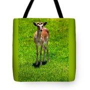 Wildlife 2 Tote Bag